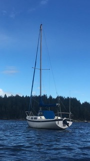 Cal 25 Sailboat for sale
