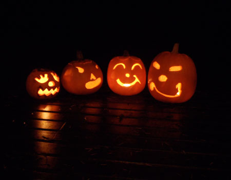 Many beautiful carved pumpkins
