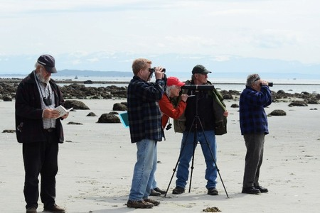 Looking for shorebirds at Smelt Bay