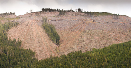 McLaughlin Ridge/IT Operation