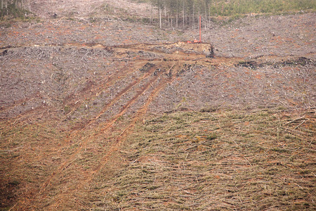 More McLaughlin Ridge/IT Operations