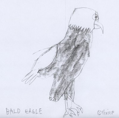 Eagle, by Olivier