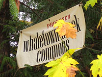 Whaletown Commons Sign