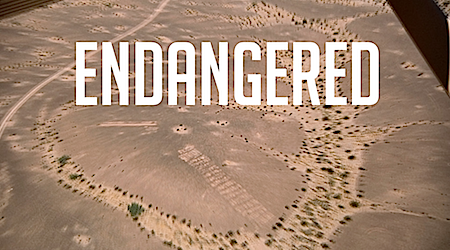 Giant geoglyphs, visible from space, are endangered by energy development in the California deserts  ©2015 Robert Lundahl