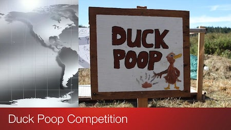 Duck Poop Competition Linnaea Harvest Fest 2015