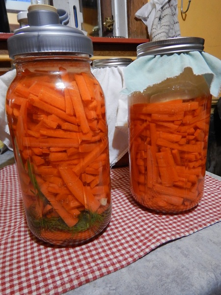 Delicious and easy carrot pickles!