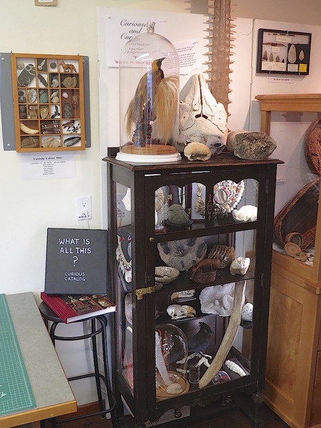 Cabinet of Curiosities in our workroom.
