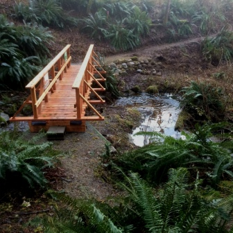 Bridge on new Whaletown Creek trail