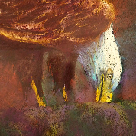 close-up of an Eagle painting