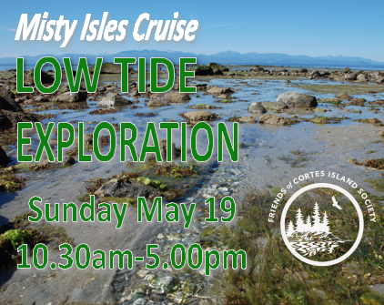 Low Tide Reef Exploration