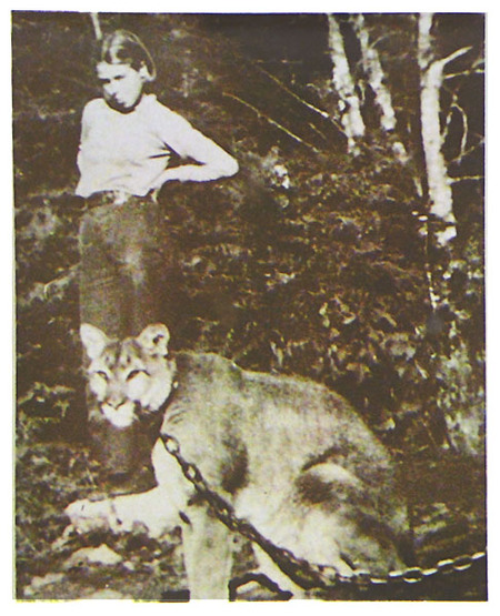 The Younger Daughter and their Pet Cougar, Leo