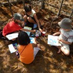 Nature Journalling on Easter Bluff