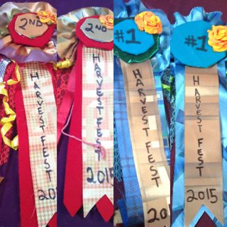 Hand made Blue Ribbons!  And Red for second!